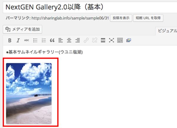 NextGEN-Gallery14