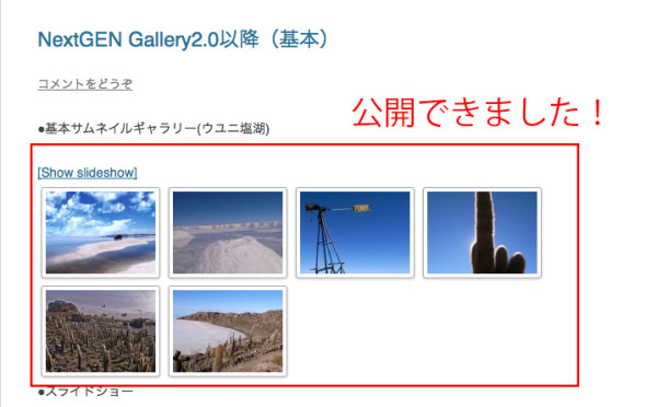 NextGEN-Gallery15
