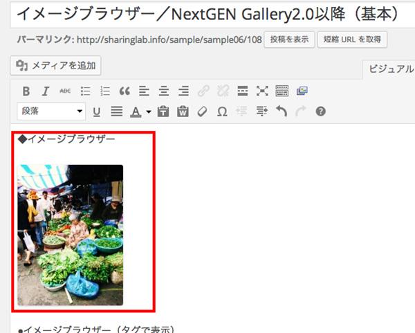 NextGEN-Gallery30-5