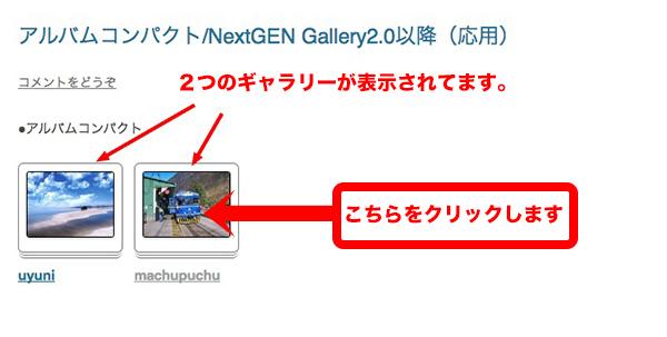 NextGENGallery2.0-57